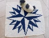 Rug Crochet Pattern - Crochet Tapestry Carpet - Compass Rose Crochet decor Wall Art Tapestry Crochet petfriendly - Instant DOWNLOAD