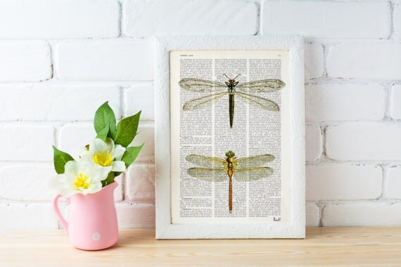 Spring Sale Dragonflies studio - Dictionary Book Print - Altered art on upcycled book pages BPBB100