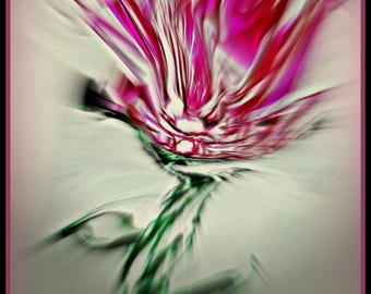 Floral Abstract, Digital Download Print, Fine Art, From Original Acrylic Painting