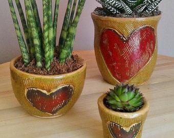 Three Mini plant pots