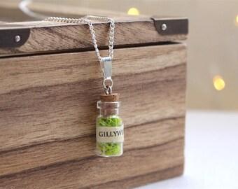 Harry Potter necklace, Harry Potter gift, Harry Potter jewellery, Harry Potter potion bottle, Felix Felicis necklace, Unicorn Blood necklace