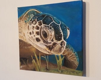 Original Oil Painting On Canvas 'The Turtle'