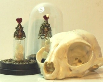 Heart Reliquary Dome - bone reliquary curios in tiny miniature domes