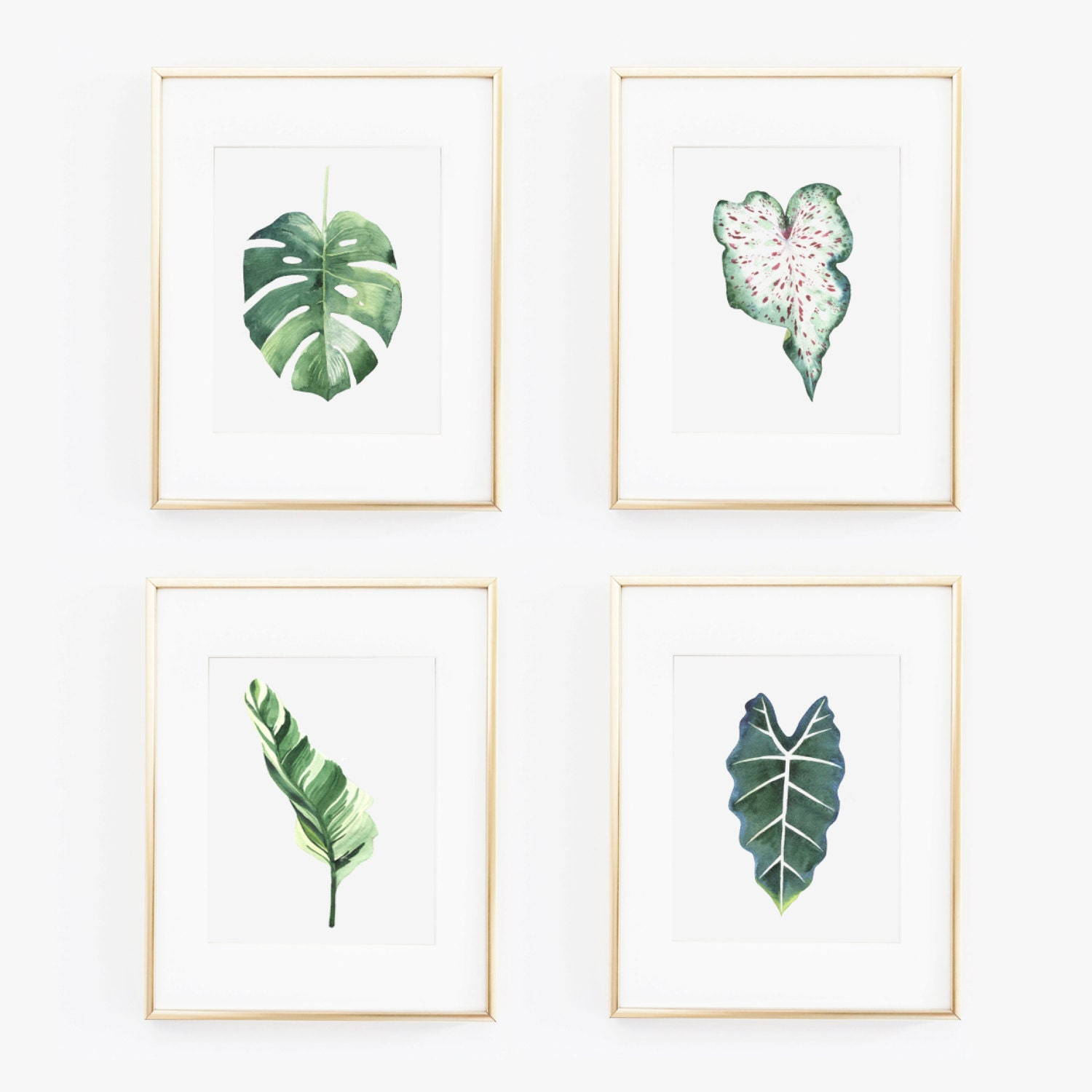 a set of 5 tropical leaves printable watercolor art palm tree