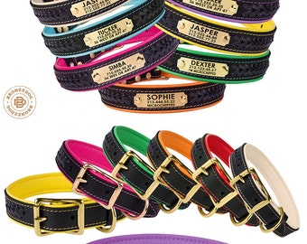 Leather Dog Collar Personalized Braided Brass Hardware Soft Padded
