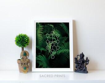Dark Fern Digital Print, Green Plant Poster, Tree-Of-Life Poster, Minimalist Fern Print, Nature Print, Sacred Yoga Print, Cool Gifts