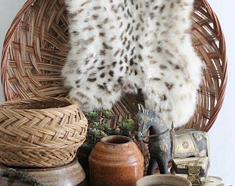 Vintage Small Spotted Rabbit Fur Pelt, Fur Accent Piece, Fur Prop