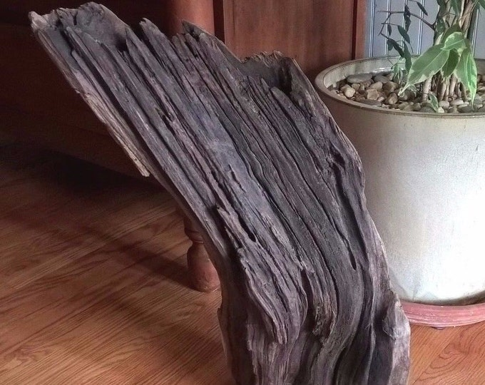 Curved Driftwood Slab. Home Decor Natural Drift Wood Fish Tank 733