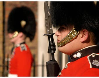 Royal Guards at St. James Palace, London
