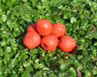 Red Apples, Set of 6 for Miniature Garden, Fairy Garden
