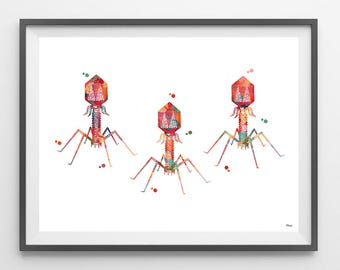 Bacteriophage Watercolor Print bacterial virus poster phage print medical art virus structure giclee print biology art bacteria science art