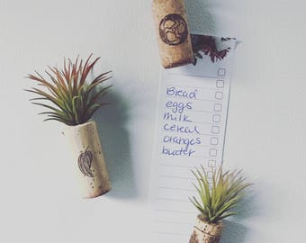 Air Plant Wine Cork Magnet {Artificial Plant}
