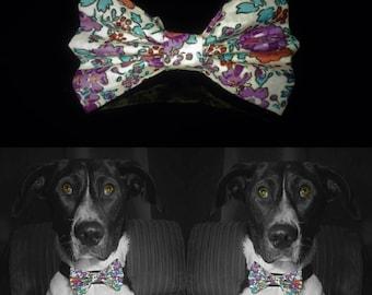 Colourflower Dog Bow Tie - Rainbow