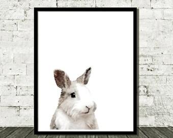 Instant Download, Bunny Rabbit Art, Printable Wall Art, Nursery Art Print, Rabbit Art Print, Cute Bunny, Rabbit Wall Art, Rabbit