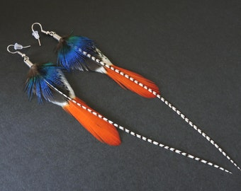 Boucles d'oreilles plumes de coq, de paon et de faisan / Rooster, peacock and pheasant feathers earrings / Blue and red earrings