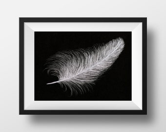 White Angel Feather
