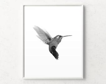 Hummingbird print, bird print, hummingbird wall art, minimalist wall art, bird art, black and white art, minimalist scandinavian, animal art