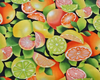 Food Fabric, Citrus fruit, Fruit fabric, Summer fabric, by Timeless Treasures, C8929
