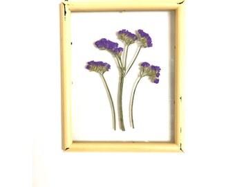 Pressed Botanicals. Float Frame Botanical Art. Hand Pressed Botanical. Botanical Specimen.