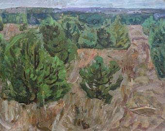 Sale 40%! VINTAGE ORIGINAL LANDSCAPE, Old Oil Painting by a Soviet Ukrainian artist V.Gaiduk 1970s, Nature, One of a Kind, Impressionist art