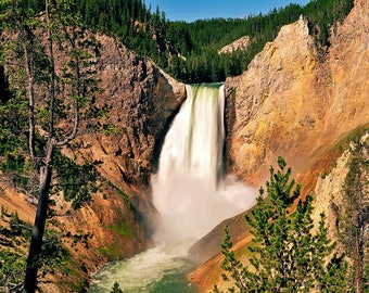 Yellowstone Lower Falls From Red Rock Point Fine Art Giclee Print, Modern Wall Art Featuring Yellowstone Fine Art Nature Photography