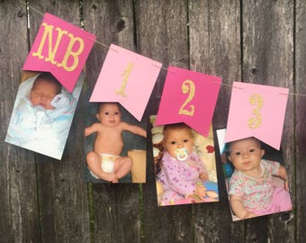 12 month photo banner. Pink and gold 1st birthday. Pink and gold photo banner. Pink and gold first birthday banner .