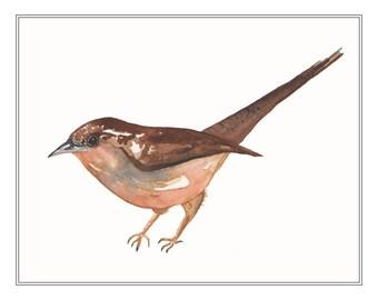 Wren Watercolor Print, Bird Art Painting