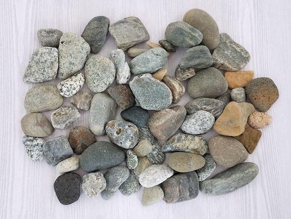 Flat Rock Stone : Small rocks smooth beach pebble art craft stone