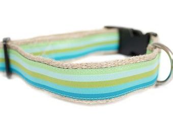 Dog collar / leash STRIPES AQUA