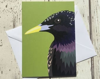 Starling bird greeting card - blank inside