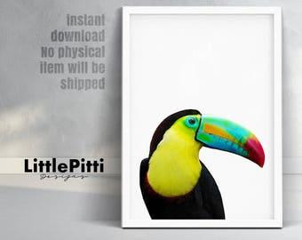 Tropical bird, toucan bird print, black yellow green, tropical wall art, tropical bird photo, rainbow toucan, bright printable, digital art