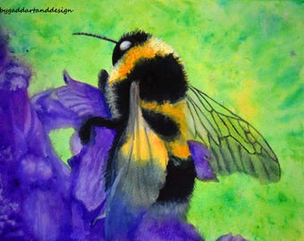 Save the bees! Bumble bee on flower, limited edition print from original painting. Watercolour crystals.