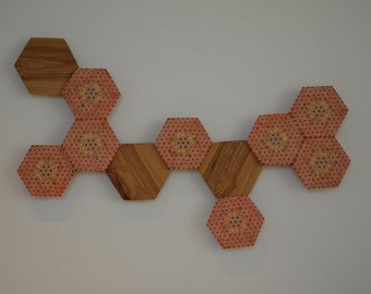 Hexagonal Cellular Structure Wall Art
