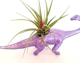 Dinosaur Metallic Purple Planter / Air Plant Holder / Budding Stricta / Desk Accessory  Home Decor / Office Planter /Hand Made  Perfect Gift