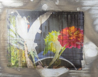 Forgotten Flowers #1