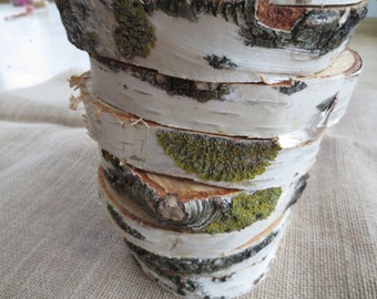 """Birch tree slices, 5.1"""" - 5.9"""" inch, birch slices, wood slices, medium slices, Natural Wood Slices, table decor,  rounds, slabs, coaster"""