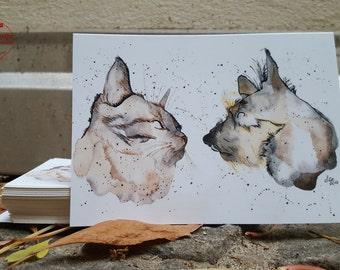 Postcard - cat & dog - postcard A6