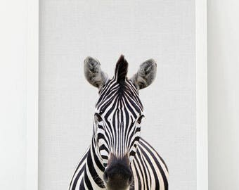 Zebra Wall Art, Zebra Print, Animal Photo, Animal Print, Safari Animal Safari Decor, African Animal, Nursery Wall Art, Nursery Animal Art