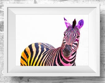 ZEBRA Digital Download Photography, Wall Art, Zebra Print, Safari Poster, Wild Animal Print, Animal Wall Art, Zebra Printable,  Wall Art,