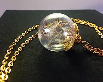 True dandelions in glass ball gold