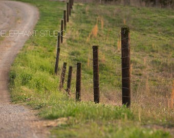 Set of 2 Fence Rows with Path Digital Background /Digital Backdrop