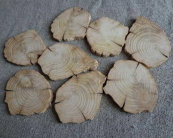8 Wooden Slices, Small Wood Rounds, White Oak Slices, Small Tree Slices, Branch Slices, Rustic Wood, Wood Circles, Woodworking,Craft Supply