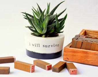 """Succulent, Cactus, Planter, Pot, Vase """"I will survive"""""""