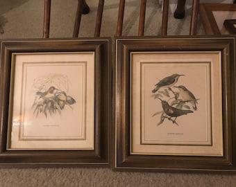 John Gerrald Keulean Bird Prints