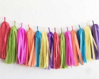 Fiesta Tassel Garland >>> red,lime,bright pink,orange,turquoise ,yellow ,purple ... tissue paper tassel garland fiesta party