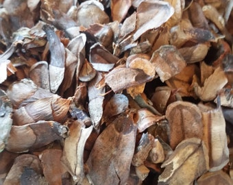All Natural Pine Cone Scales, Pinecone Scales, Vase Filler, Potpourri, Plant Mulch