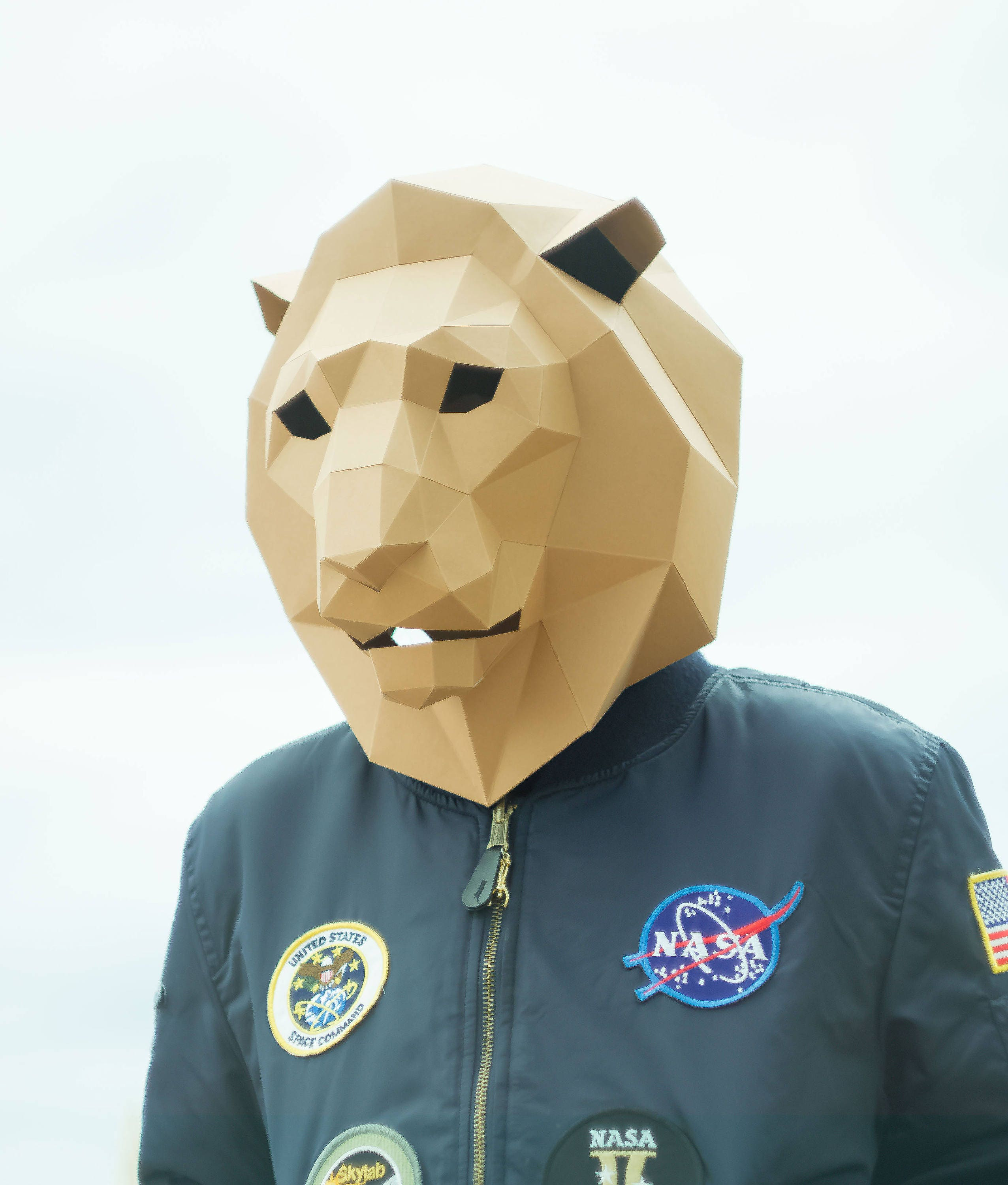 how to make lion mask with chart paper