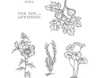 Stampin' Up! FABULOUS FLORA, set of 6 Stamps, New