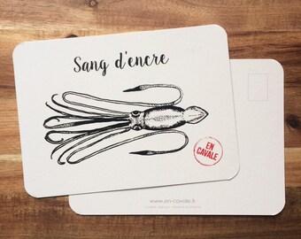 Card postal cuttlefish + envelope