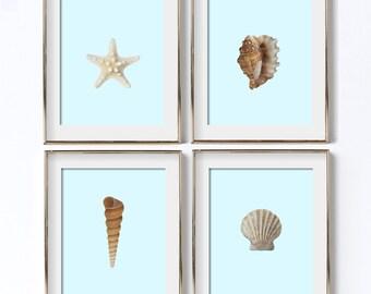 Sea Shell Wall Art Digital Download Sea Poster Ocean Print Bedroom Wall Art Beach Life Starfish Print Beach Shells Art Scallop Print Coastal